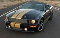 2008 Shelby - muscle-cars photo