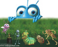 A Bug's Life - a-bugs-life wallpaper