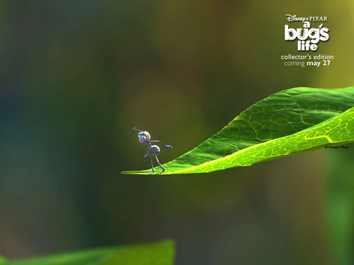 Pixar wallpaper called A Bug's Life
