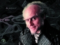A Series of Unfortunate Events - jim-carrey wallpaper