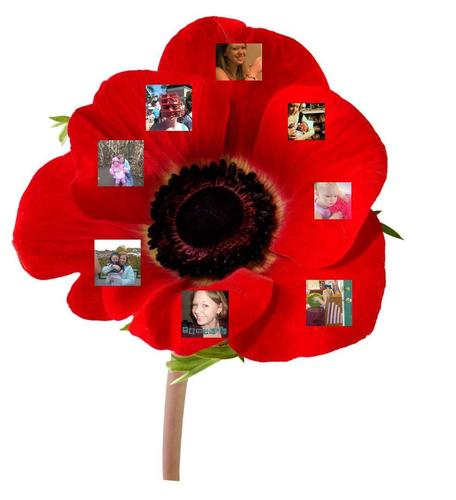 A Temptasia fan papaver