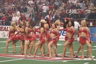 AFL Cheerleaders