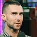 Adam - adam-levine icon