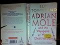 Adrian môle, mole