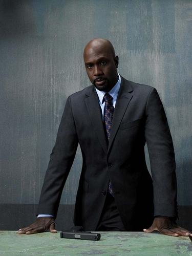Agent James Ellison