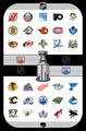 All 30 teams of the NHL
