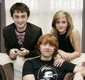 All of them - harry-potter-actors photo