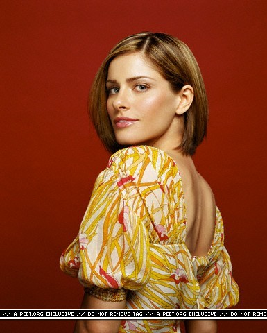 Amanda Peet wallpaper entitled Yariv Milchan photoshoot