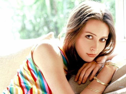 Amy Acker wallpaper called Amy Acker