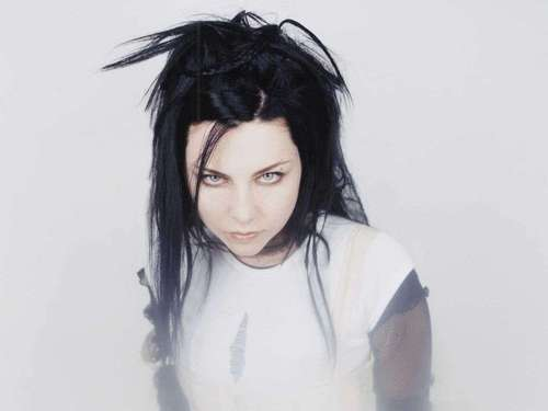 Evanescence kertas dinding entitled Amy Lee