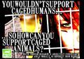 Animal Cruelty Campaign