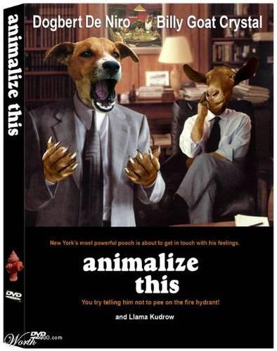 Animal Flicks 6