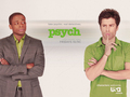 Another Psych WP - psych wallpaper