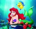 Ariel & Flounder - the-little-mermaid wallpaper