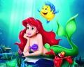Ariel & menggelepar, flounder