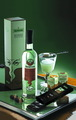 Artemisia Absinthium - absinthe photo