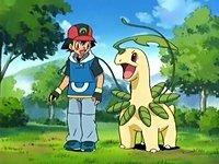 Todos lo etiquetan como Amourshipping pero la del juego :v (zukulemta by the way) #PokémonXY #