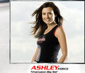 Ashley Force - driving-force photo