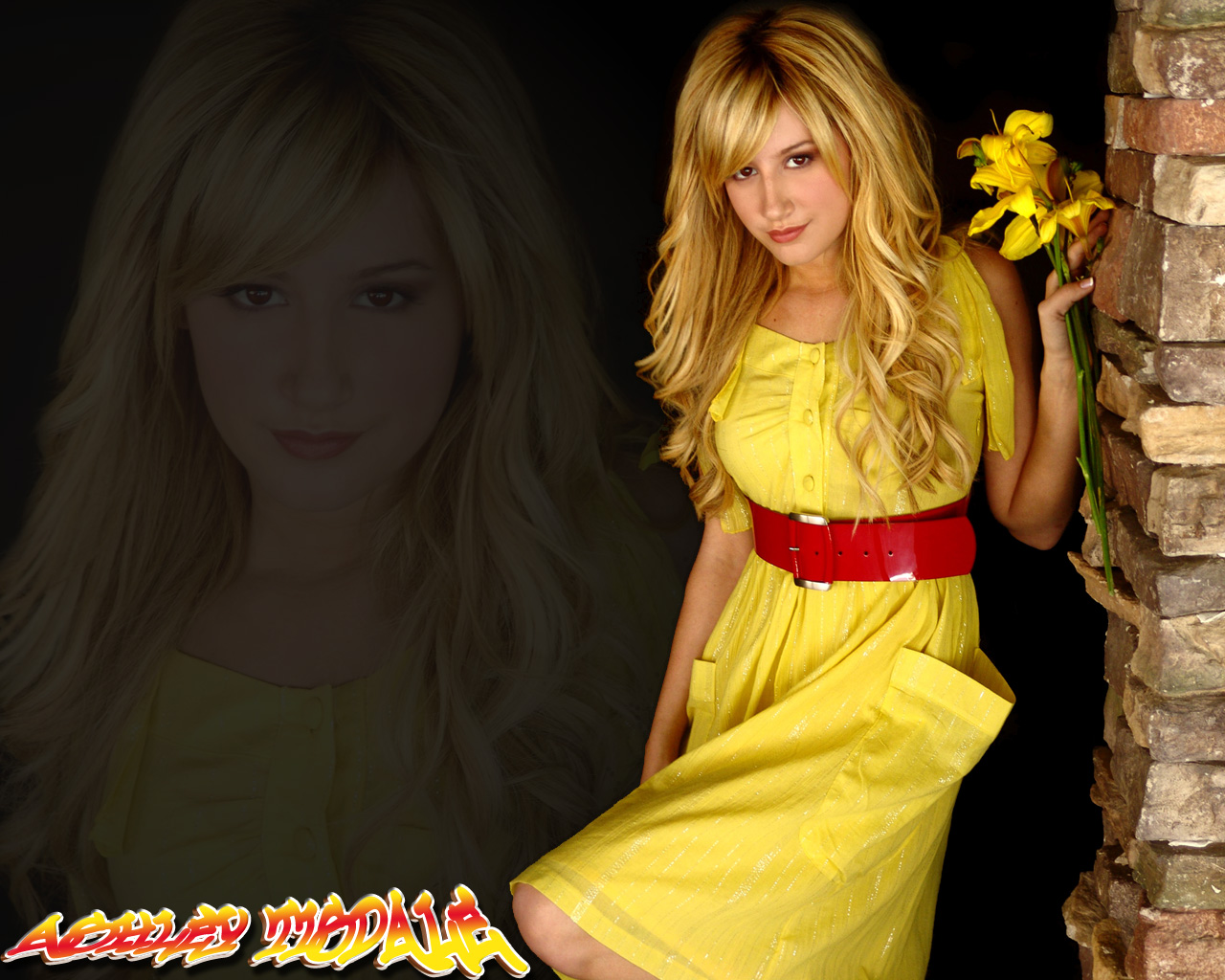 ashley tisdale wallpapers outline