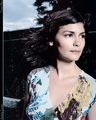 Audrey - audrey-tautou photo
