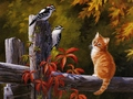 cats - Autumn Friends wallpaper
