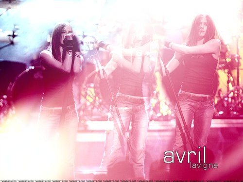 एव्रिल लावीन वॉलपेपर entitled Avril
