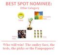 BEST SPOT: Other - the-fanpoppy-awards photo