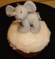 Baby Elephant - cupcakes photo