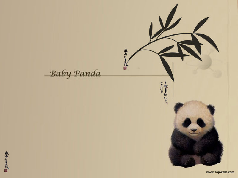 wallpapers baby. Baby Panda wallpaper