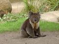 Ballarat Australia