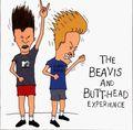 Beavis & Butthead (1993-1997) - the-90s photo