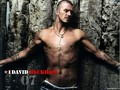 Beckham - david-beckham wallpaper
