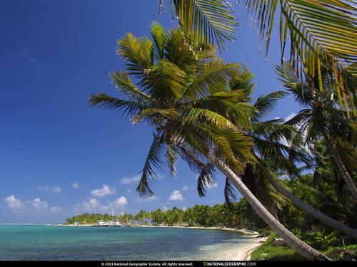 Belize দেওয়ালপত্র