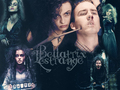 Bella wallpaper - bellatrix-lestrange wallpaper