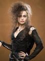 Bellatrix - bellatrix-lestrange photo