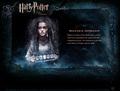 Bellatrix wallpapers