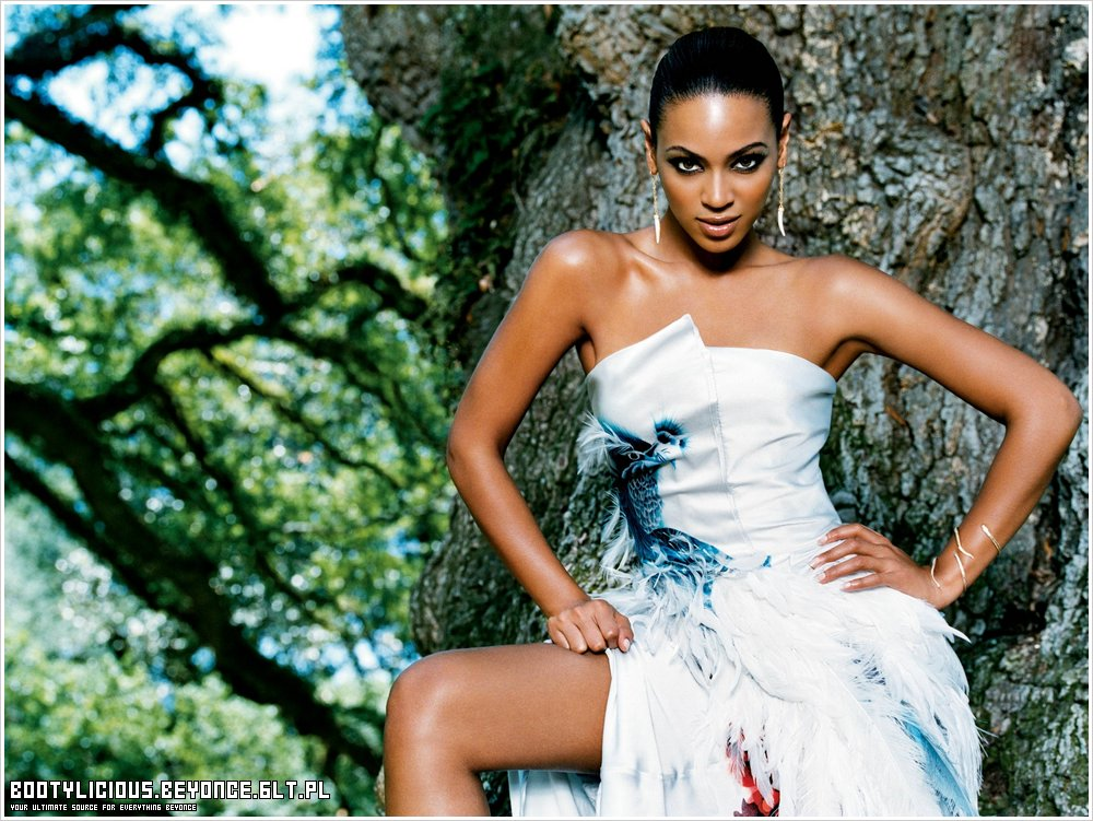 beyonce wallpaper beyonce photo 86906 fanpop
