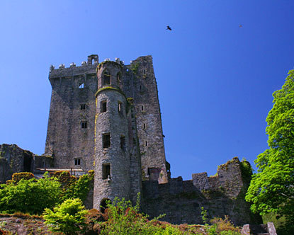 Blarney Castle - castles Photo