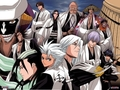 Bleach Captains - bleach-anime photo