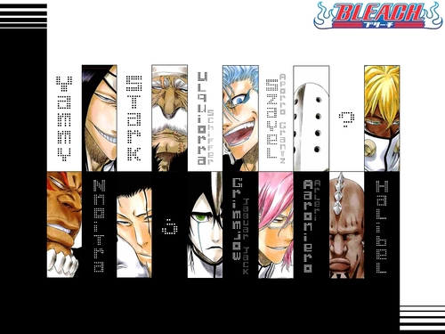 Bleach piX