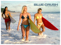 Blue Crush - michelle-rodriguez photo