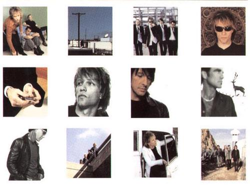 Bon Jovi wallpaper titled Bon Jovi