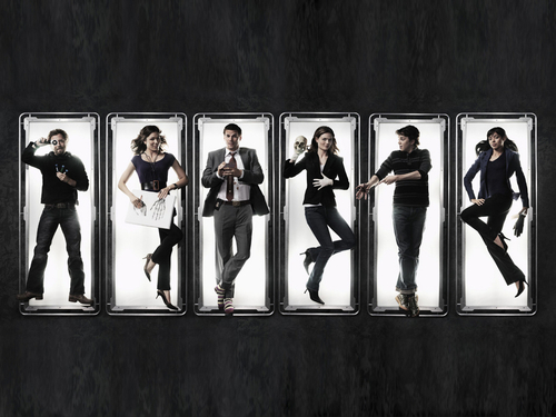 Booth and Bones wallpaper called Bones<333