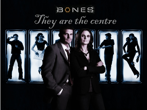 bones images bones and booth hd wallpaper and background