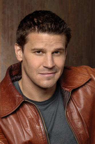 Seeley Booth wallpaper entitled Booth