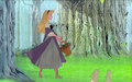 Briar Rose - disney-princess photo