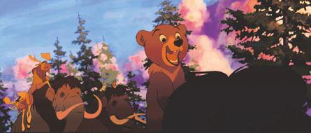 Brother oso, oso de