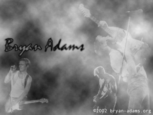 Bryan Adams - bryan-adams Wallpaper