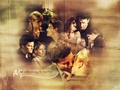 Buffy and Angel - buffy-the-vampire-slayer wallpaper