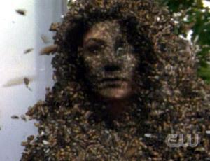 Bug Lady/Gloria